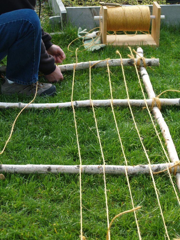 leaning string bean trellis (5/6)