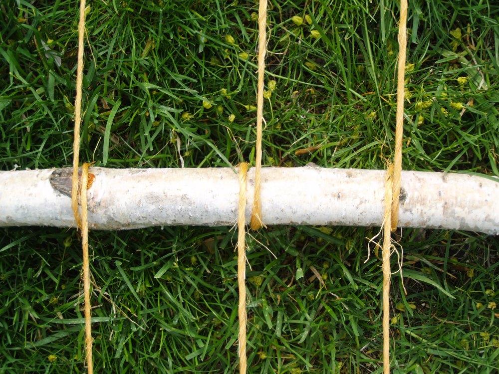 leaning string bean trellis (6/6)