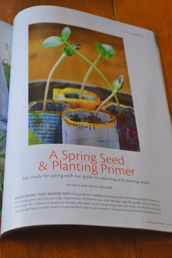 new magazine Mother Earth Living gets 5 stars (4/4)