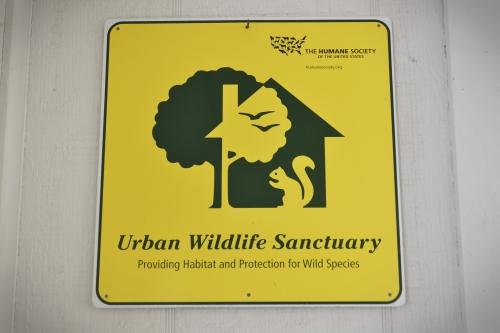 wildlifesanctuary