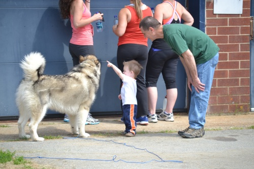 dog, toddler, grandpa