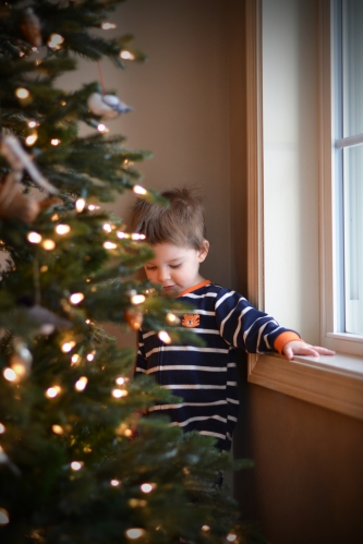 The bird tree stays up well into the new year at my parents' house.  It makes a great hiding spot for little boys.