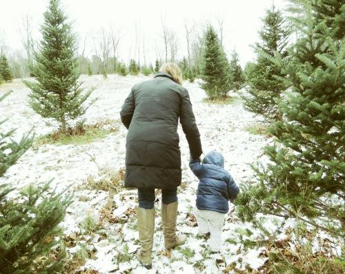 The 2013 Christmas Tree Hunt